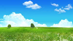 Cloud_grass_field_tree_nature