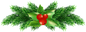 Christmas Holly_Pine_PNG_one