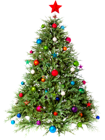 Christmas Tree Png Psd Vector Images Free Download Christmas tree cartoon artificial christmas tree christmas tree ornaments cartoon christmas tree our database contains over 16 million of free png images. free png images