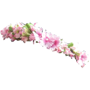 Flower crown png images Transparent