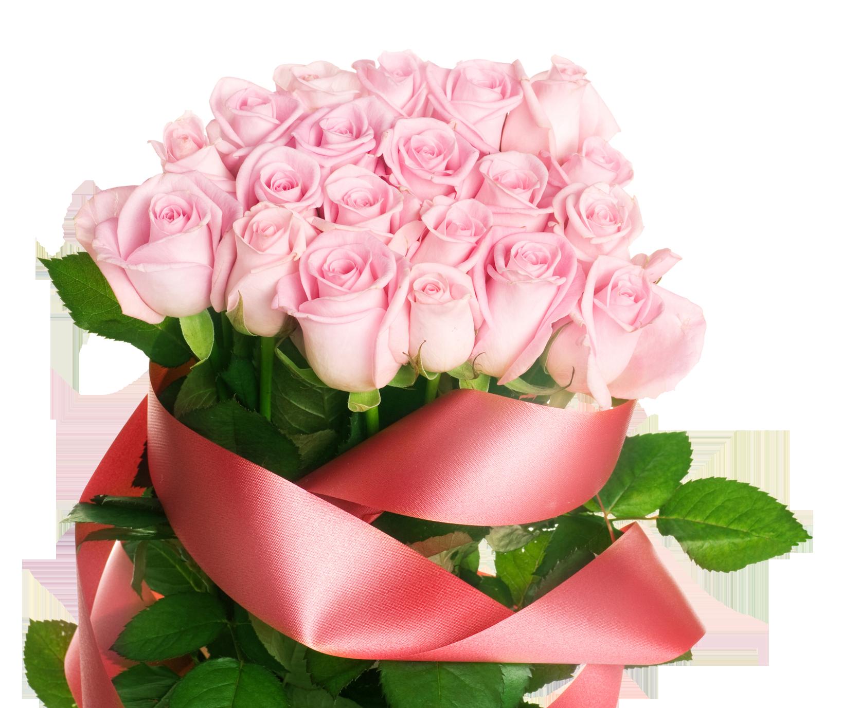 Pink Rose PNG, Psd, Clipart, Transparent