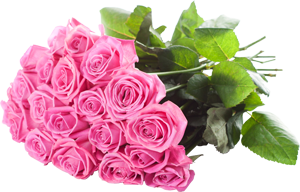 Bunch of pink rose