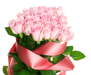 Light pink rose with ribbon