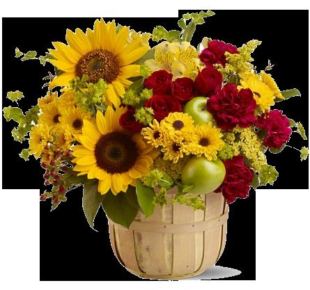 Sunflower Bouquet Png Hd Image