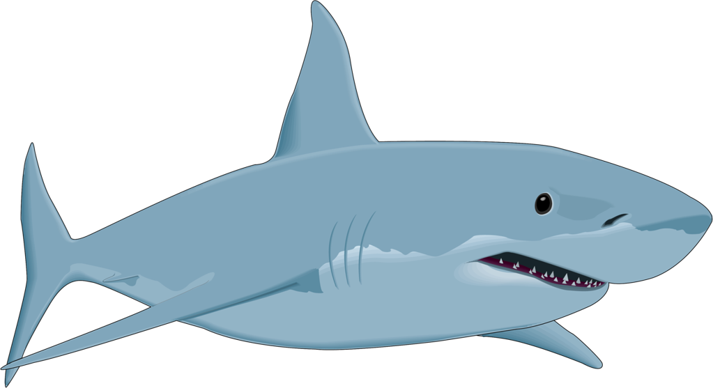 shark fish clipart png free download rh pngimagesfree com clip art shark swimming sharks clipart black and white