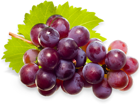Grapes Png Images Grapes Png Photo Gallery Free Download
