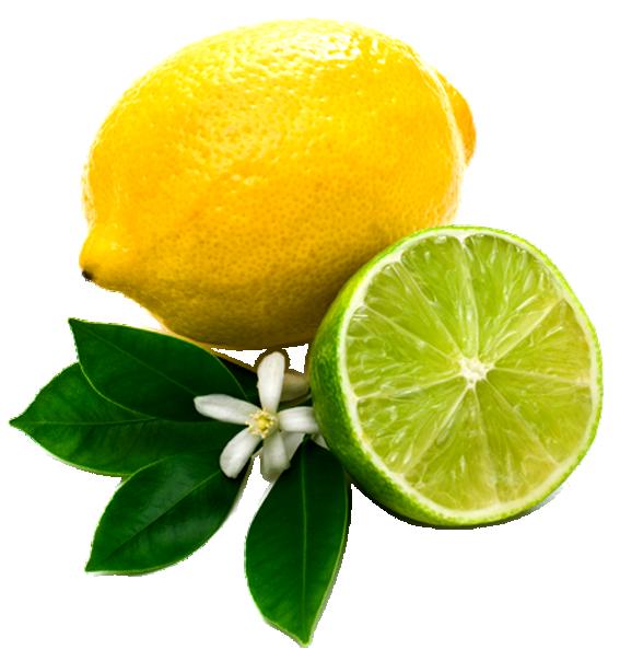 Lemon png image with leaf and slice