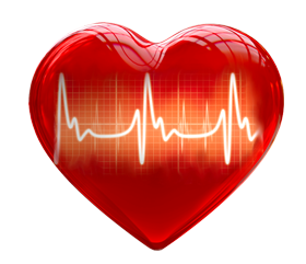 Heart 3d for medical use PNG image