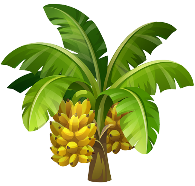 Banana Tree Png Photo Transparent Background Blend 3ds dae fbx obj stl. free png images