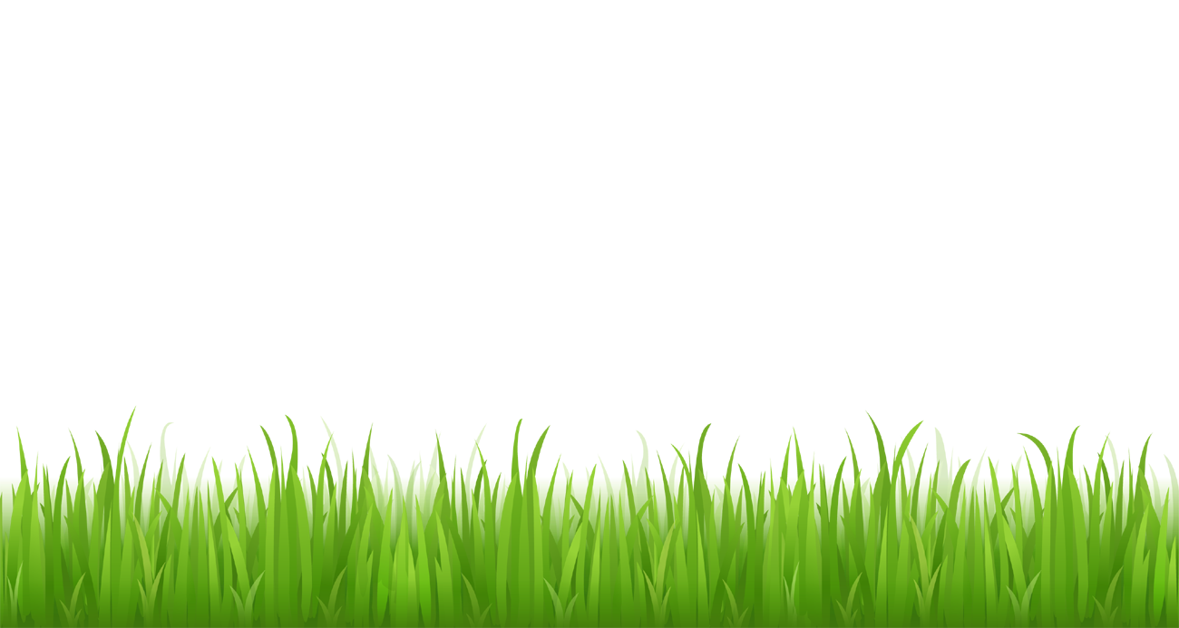 Grass Clipart png Picture for bottom design