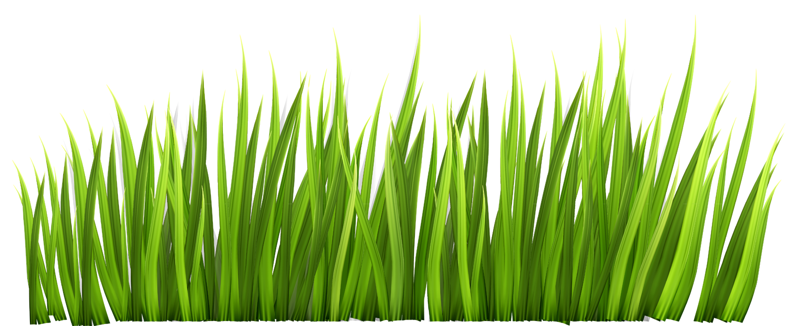 Grass png Decor Clipart Picture, Grass clipart