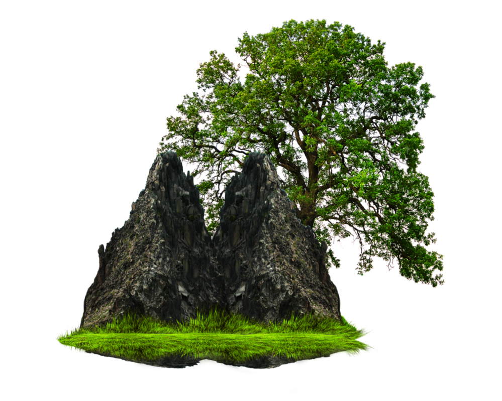 Png Grass With Tree And Rock Png