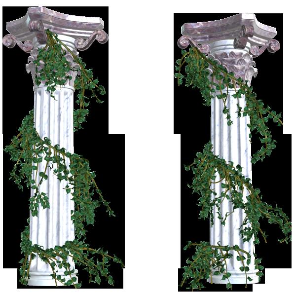 vines png decorative elements transparent