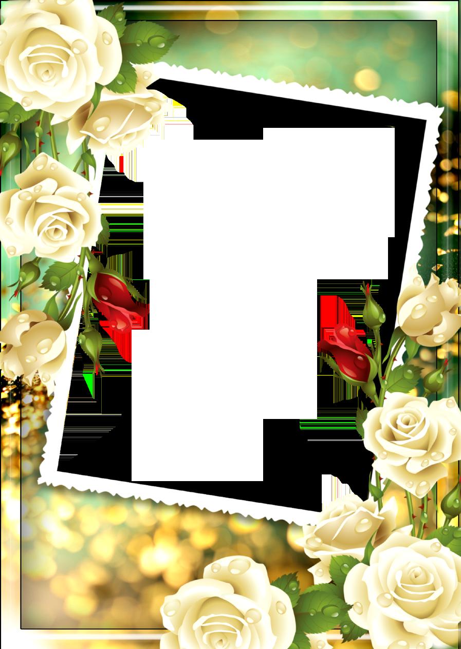Floral frame png images free download