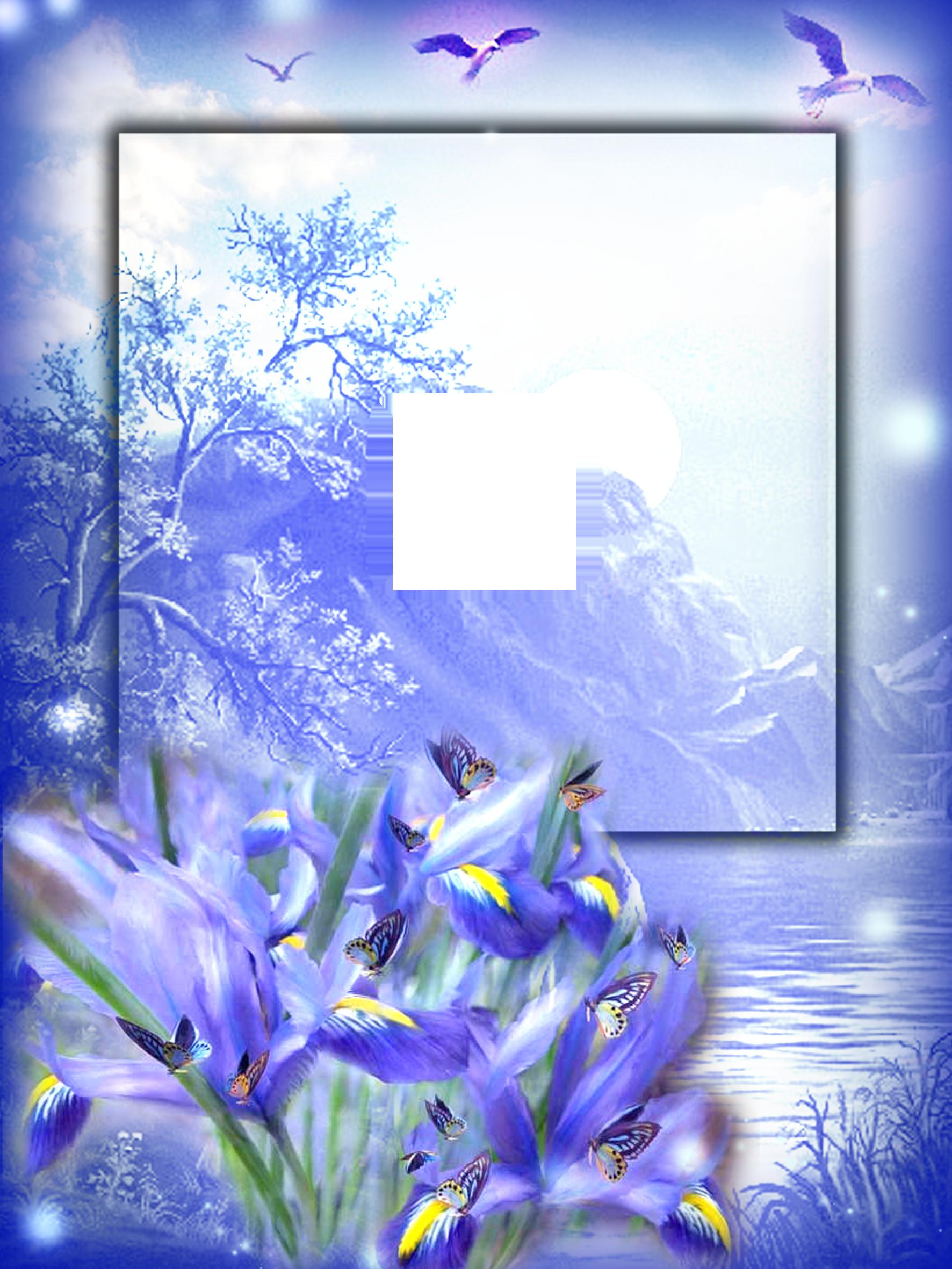 frame png, frames png Transparent images free download