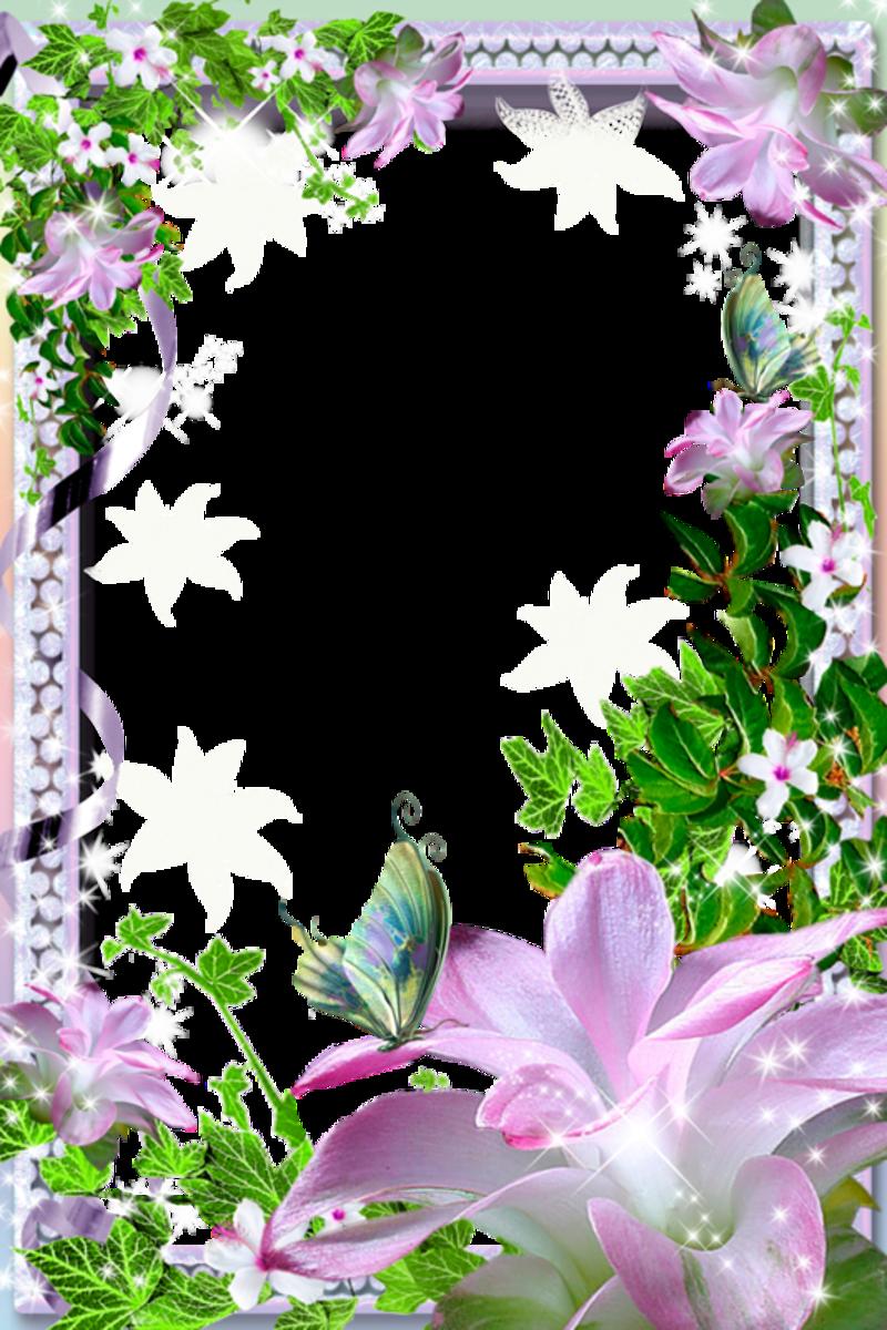 Flower Frame Png Psd Vector Free Download