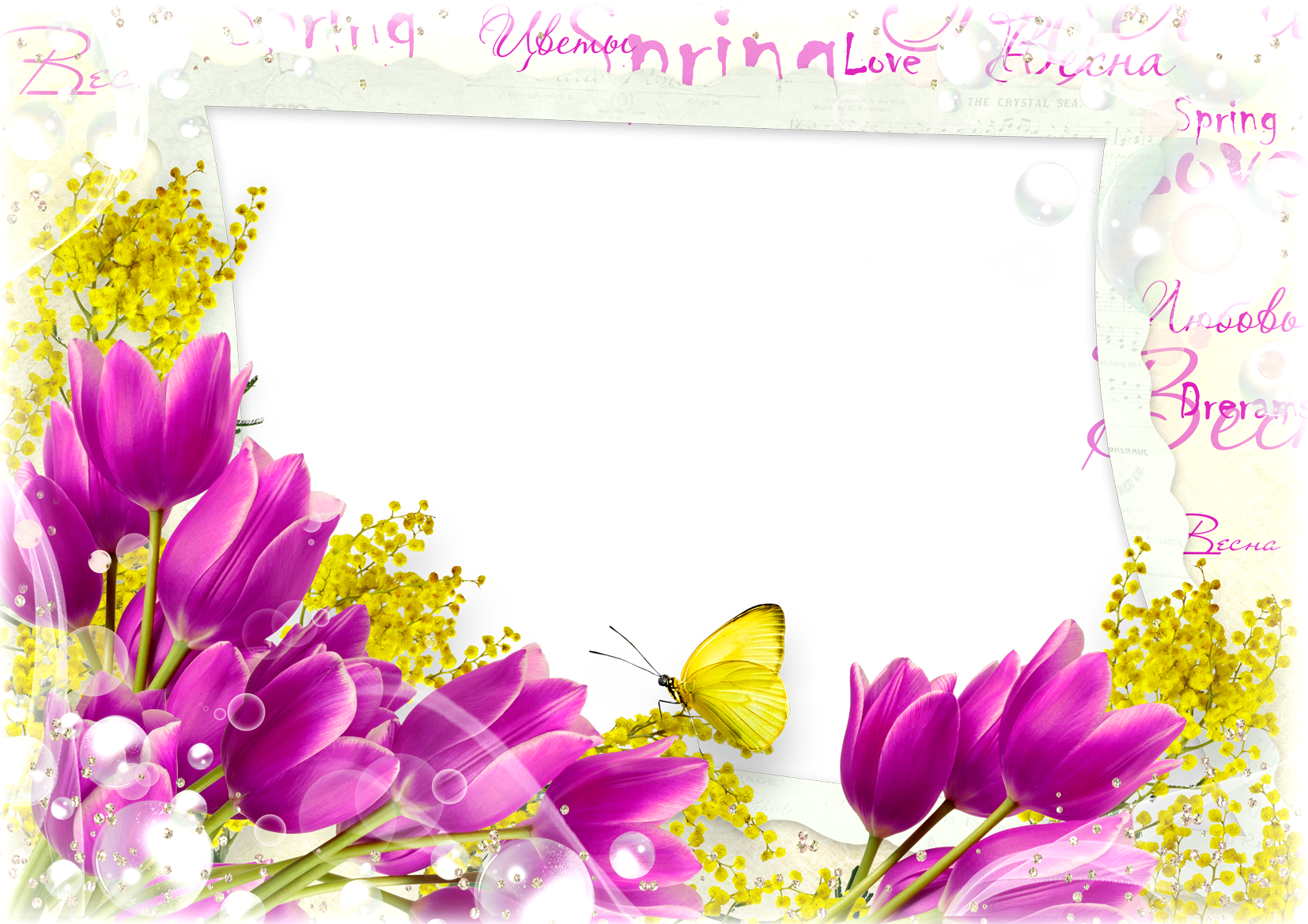 Flower frame png - psd, vector Free Download